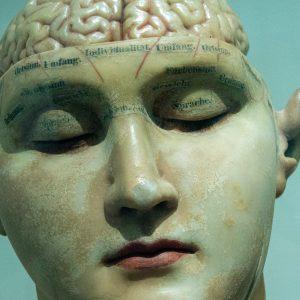 brain body anger
